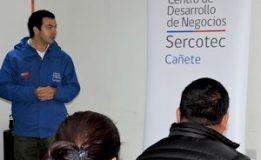 CENTRO DESARROLLO DE NEGOCIOS DE CAÑETE DICTA TALLER DE FACTURACIÓN ELECTRÓNICA A PYMES EN TODA LA PROVINCIA DE ARAUCO